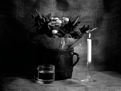 Smädné kvety