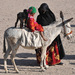 Zo života beduínov
