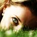 Oko v trave alebo trava v oku?
