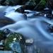 Owengarriff River V
