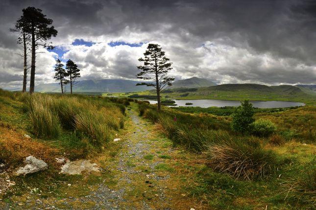 Tawnyard Lough