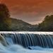 rieka Lee IV