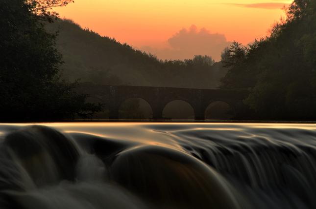 rieka Lee V