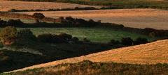 Irska country