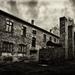 ... Zákoutí v Auschwitz ...