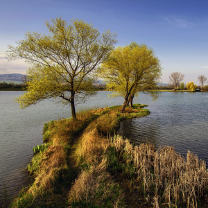 Pri jazere I