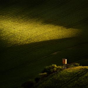 Maľované svetlom