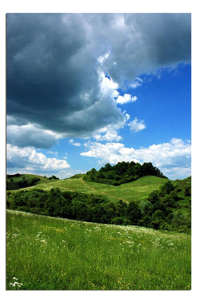 oblacnost