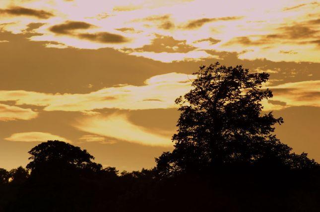 sumrak