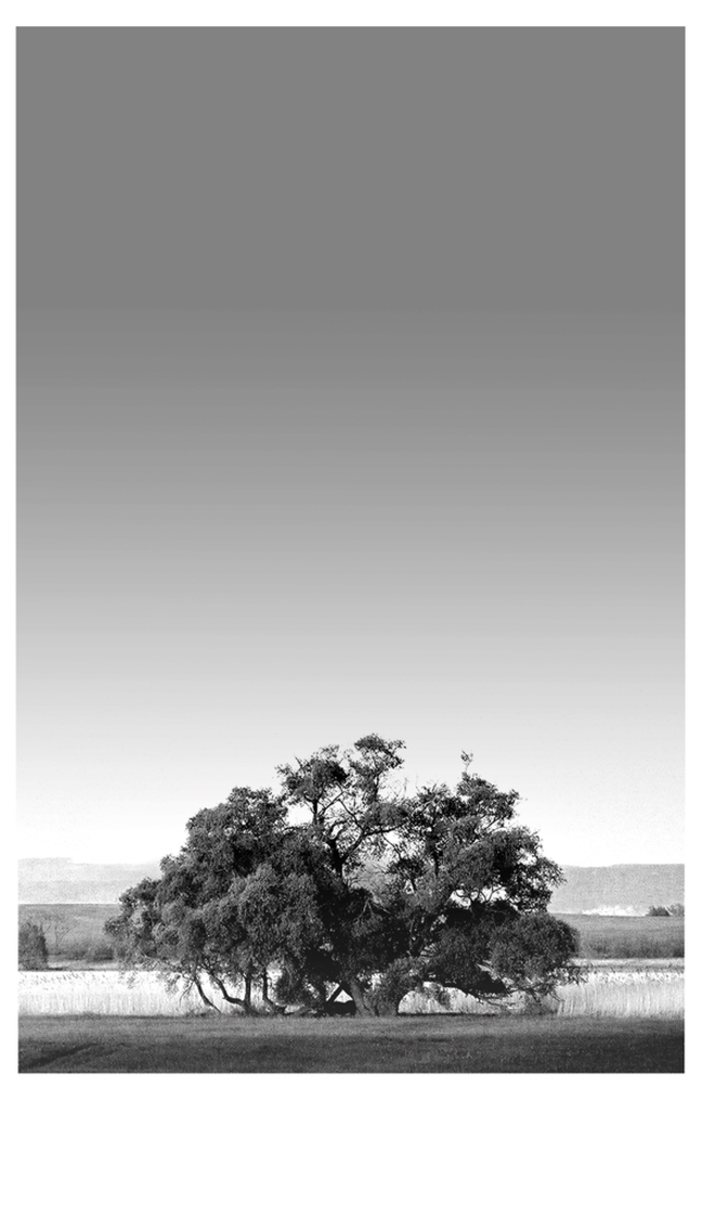 Strom ...