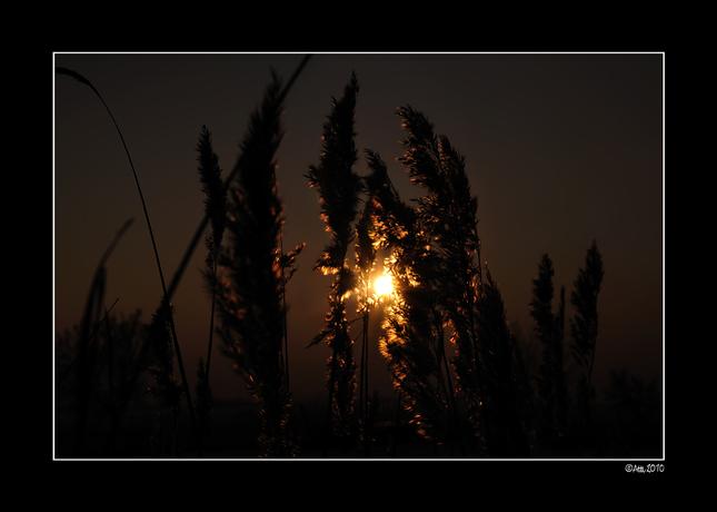 čarovné svetlo II