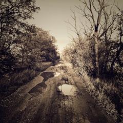 Poľná cesta.