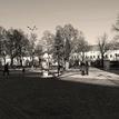 V parku.