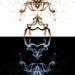 White Devil vs Black Devil