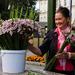Kvetinarka z Kaunasu