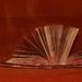 Kniha pekiel - Ukáž mi tvoje taj