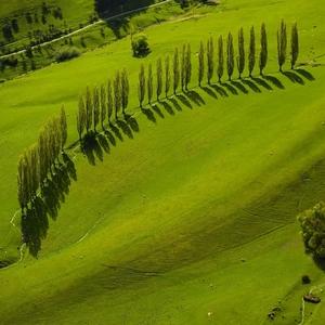 Zelený ostrov