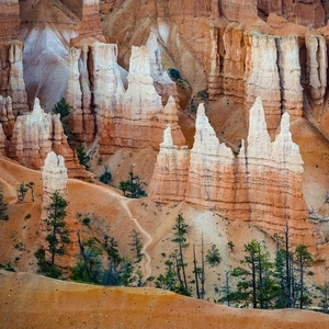 Bryce Canyon v detaile
