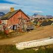 Grónsky grunt