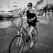 Bicykel, žena, pes