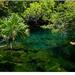 Cenote Xel-Ha