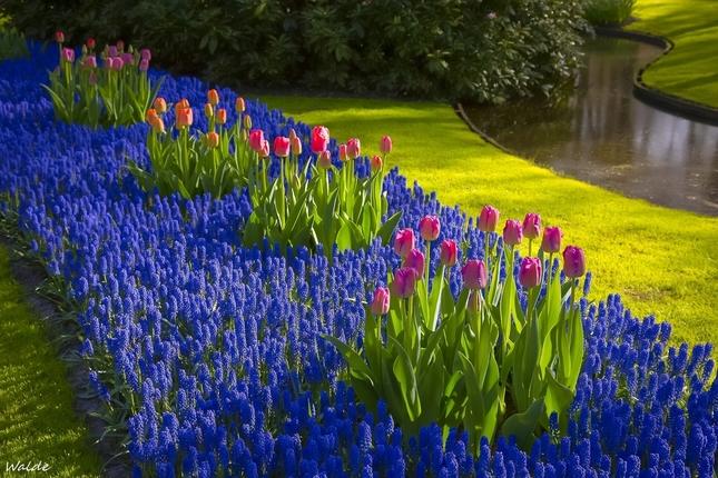 Jar prichádza