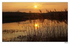 Stupavský sunset