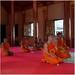 Mladí mnísi