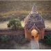 V tieni pagody