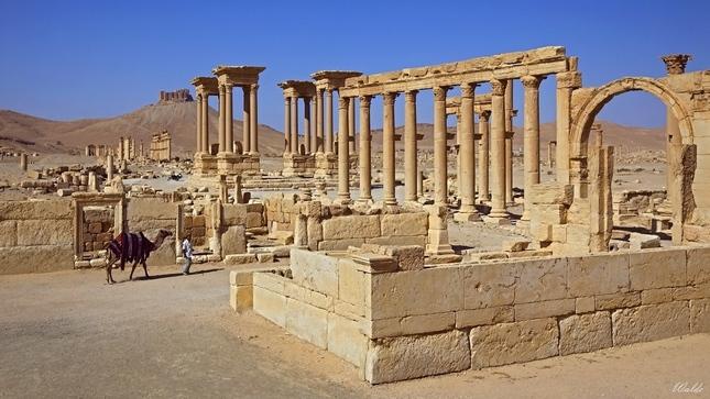 Bájna Palmýra