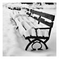 ...park bench