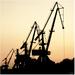 A dock cranes
