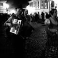 Salamandrové dni / Salamander days, Banská Štiavnica, 2014