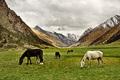 Kirgizsko II
