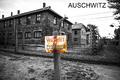 Osvienčim - Auschwitz I.