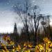 Zakliaty zámok v jesennej záhrad