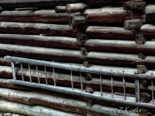 zk_wood_02