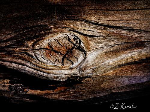 zk_wood_30
