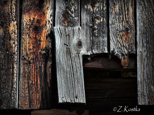 zk_wood_14