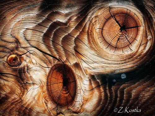 zk_wood_31