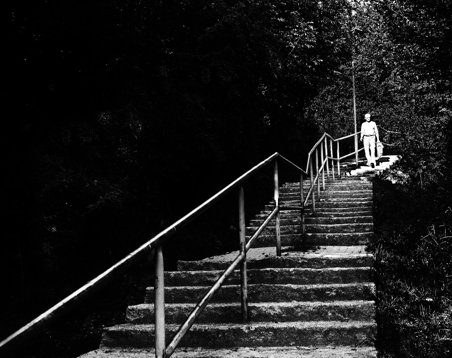 schody-c