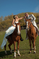 Svadobna konina