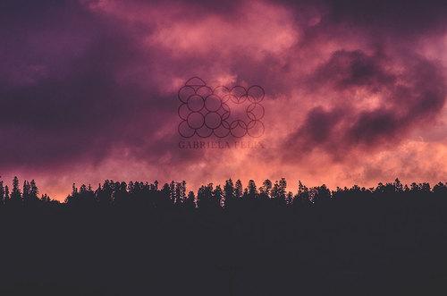 Krajina_6