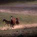 Tam, kde dunia kopytá koní ...