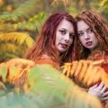 Redheads II.