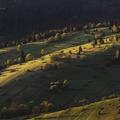 Meadow at may at Osturna