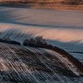 Zimný západ v aleji