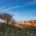 Starý strom a starý hrad
