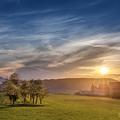 Západ slnka v kvitnúcej aleji