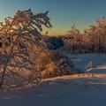 Zima na Veľkej Javorine